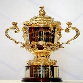 William Webb-Ellis trophy