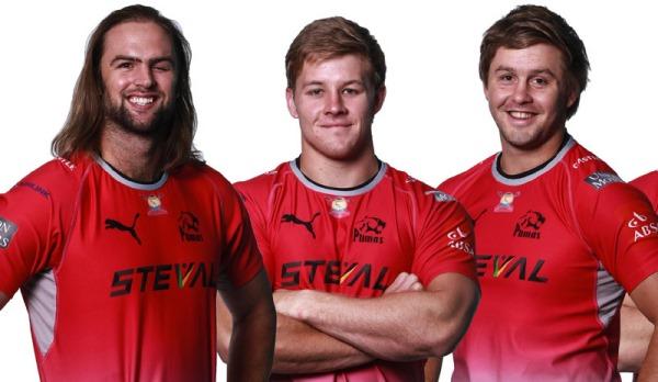 Steval Pumas signings